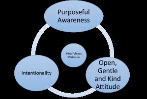 Mindfulness Molecule